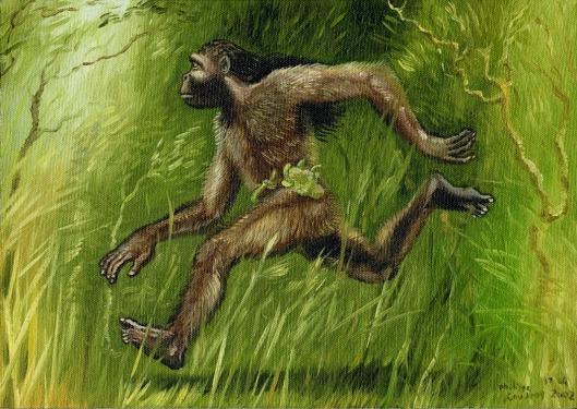 Photo Credit: http://www.phantomsandmonsters.com/2014/06/agogwe-little-men-of-forest.html