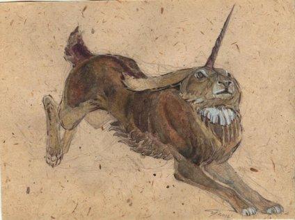 horned_rabbit_sketch_by_unita_n-d54y5qa